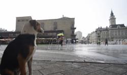 Upozorenje RHMZ: Noćas i sutra u Srbiji obilni pljuskovi sa grmljavinom i olujnim vetrom