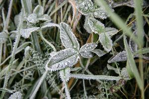 Upozorenje RHMZ: Uskoro 10-15°C hladnije, moguć i sneg