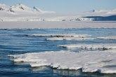 Upozorenje naučnika: Nema leda