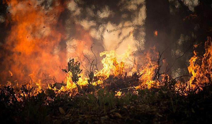 Uprava za vanredne situacije apeluje na građane da ne pale vatru na otvorenom prostoru