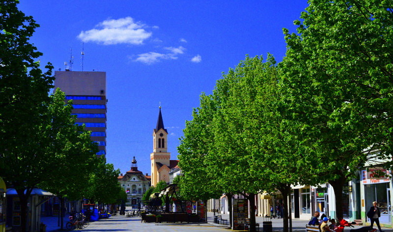 Ustanove kulture u Zrenjaninu pripremile letnje programe na otvorenom