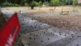 Uznemirujući video: Pomor vrabaca u Podgorici