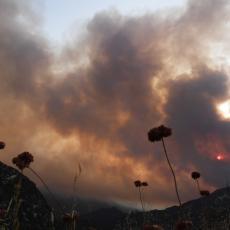 VATRENA STIHIJA PRIBLIŽAVA SE KUĆAMA U OMILJENOM SRPSKOM LETOVALIŠTU: Na terenu više od 20 vatrogasaca