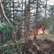 VATRENA STIHIJA PROGUTALA MOKRU GORU: Na Mokroj Gori vatrogasci uspostavljaju protivpožarne puteve - stanovništvo nije ugroženo