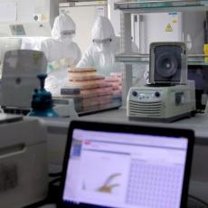 VATRENO OKO RADI PUNOM PAROM: Brojevi zabrinjavaju, sve više pozitivnih na testovima