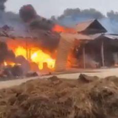 VELIKI POŽAR ZAHVATIO CELU FARMU: Vatra progutala brojne krave, bikove, svinje i poljoprivredne mašine (VIDEO)