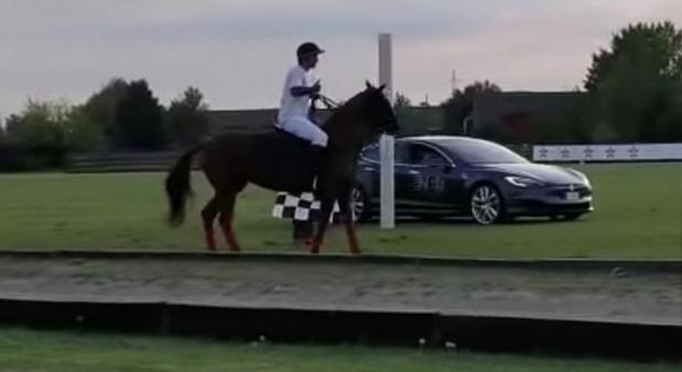 VIDEO: Tesla Model S protiv konja