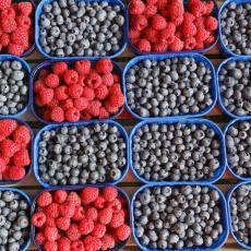 VITAMINSKA BOMBA: Samo JEDNA ŠAKA ovog voća DNEVNO, napraviće veliku PROMENU u ORGANIZMU!