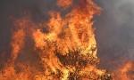 Vanredna situacija na Havajima zbog velikog požara (FOTO)