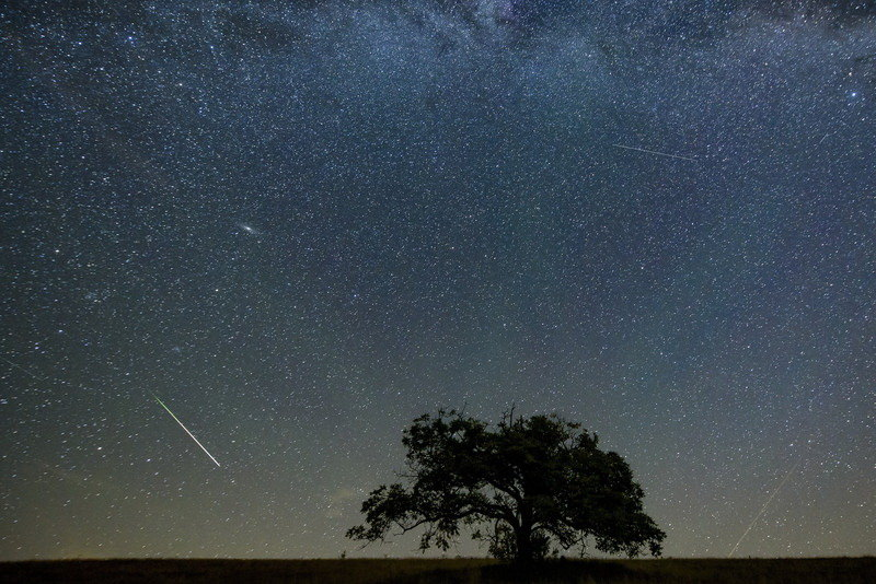 Spektakl na nebu: Danas vrhunac meteorskog pljuska (VIDEO)