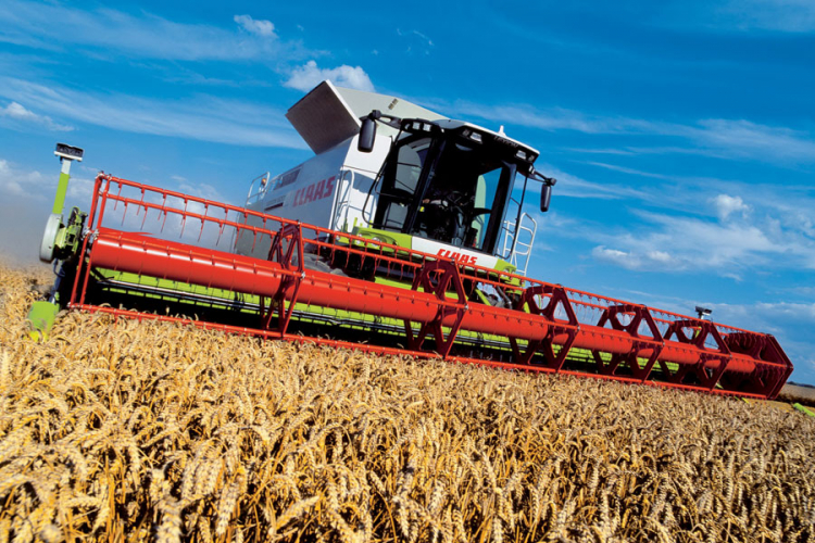 Veći podsticaji za proizvodnju pšenice u RS