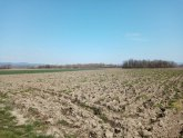 Veliki dan za poljoprivrednike iz okoline Čačka: Deponija se izmešta na drugu lokaciju