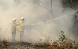 Veliki požar besni nadomak Sidneja