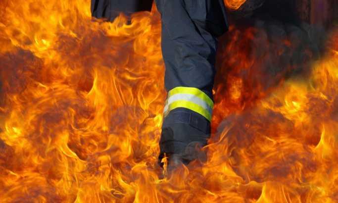 Veliki požar kod Požarevca, gore hektari njiva