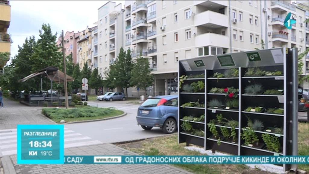 Vertikalna bašta u Novom Sadu, ekološki pilot projekat Udruženja Zeleni sad