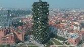 Drveće i klimatske promene: Vertikalne šume i gradovi budućnosti