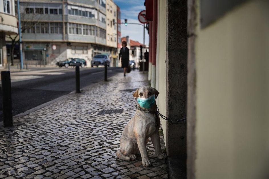 Vest o besu vlasnika pasa u Srbiji prenose mediji u SAD