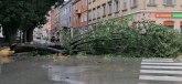 Vetar počupao drveće, odneo krovove - ima povređenih FOTO
