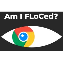 Vivaldi, Brave i DuckDuckGo odbili novu Googleovu tehnologiju praćenja koja navodno štiti privatnost korisnika