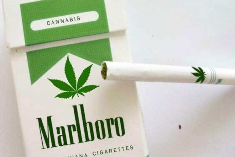 Vlasnik Marlbora ulaže 1,8 milijardi dolara u marihuanu