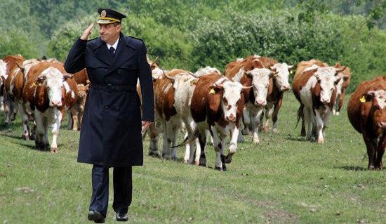 Vojska Srbije: estradni poligon za Vođu i njegove glodare