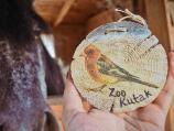Volonteri pravili dekupaž na drvetu, prodajući ga pomažu životinjama