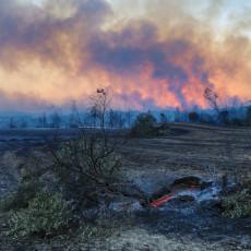 ZABRANJENO KRETANJE PO ŠUMAMA: Severna Makedonija uvela novu rigoroznu meru zbog požara