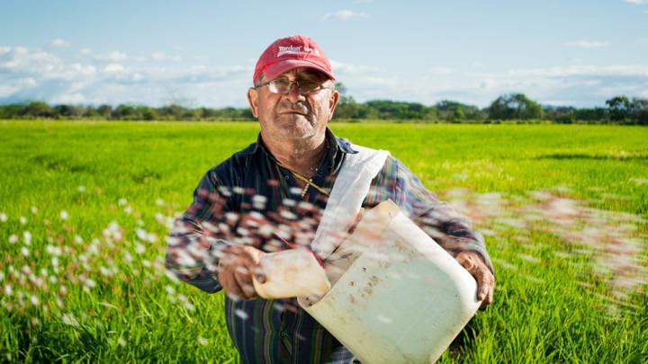 ZABRINJAVAJUĆI STATISTIČKI PODACI!U Srbiji najviše poljoprivrednika starijih od 65 godina
