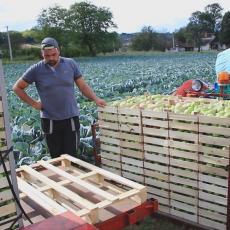 ZADRUGARSTVO KAO NAJBOLJI OBLIK ORGANIZOVANJA: Zbog usitnjenih poseda poljoprivrednici se sve češće udružuju