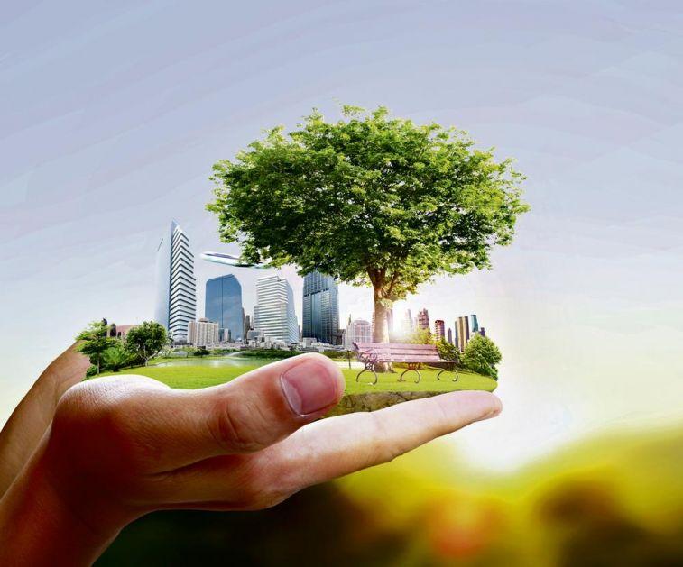ZASADI DRVO! ODRŽIVOST: Zeleni gradovi budućnosti