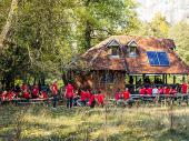 ZELENI KUTAK ZA SVE: Drvored u Neradovcu