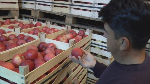 Za Rusiju ide 1.500 tona jabuka i 12 hiljada litara srpske rakije