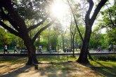 Zaigrali se: Orgije usred parka u prestonici Velsa FOTO