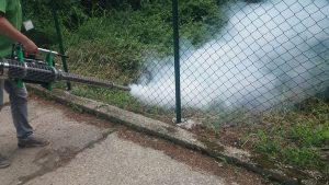 Zaprašivanje komaraca u Beogradu i u nedelju