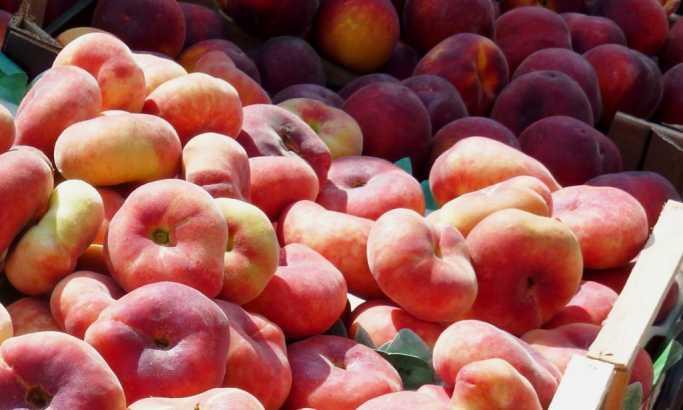Žašto je Rusija stopirala uvoz srpskog voća?