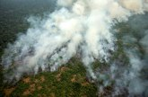 Zbog čega je došlo do ogromnih požara u Amazoniji?
