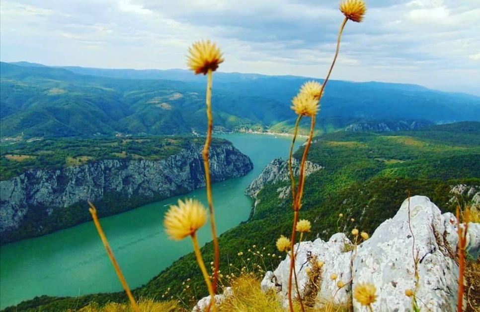 Zelene obveznice Srbije