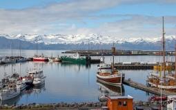 Zemljotres magnitude 5,6 pogodio Island, zaljuljao zgrade u Rejkjaviku