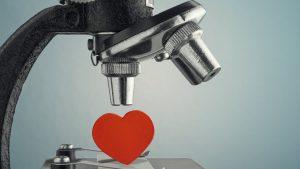 Žene, muškarci i ljubav: Uparivanje preko DNK – može li nauka da nam pomogne u ljubavi