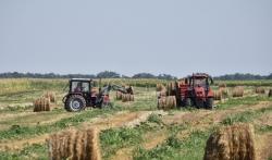 Agrosmart: Vrednost poljoprivredne proizvodnje u 2018. procenjena na 5,7 milijardi dolara