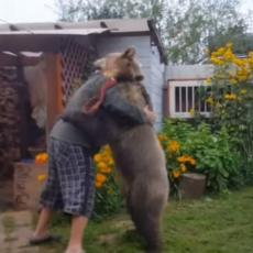 BOSANAC? Reklo bi se da se tip rve sa medvedom, ali u pitanju je NEŽNO GRLJENJE! (VIDEO)