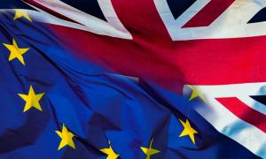 Britanci izlaze iz Evropske unije, traže alternativu i merkaju - Srbiju!