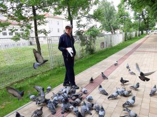 Čika Brankovi golubovi u parku u Vranju atrakcija i lek za dušu