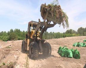 Čišćenje divlje deponije u Hajdukovu