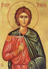 Danas je Sveti Trifun Zarizoj