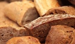 Hleb sa sušenim insektima od sutra u finskim supermarketima