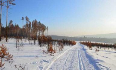 Hoće li Evropa ići u Sibir po drva?