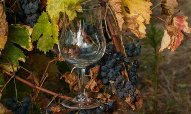 Na Krimu ponovo napravljeno vino kojim se krstio knez Vladimir