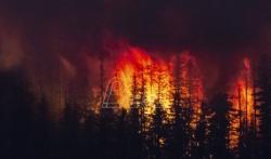 Naučnici: Što je vreme toplije, požari se više šire