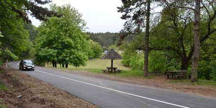 Obnova puteva na Fruškoj gori - Grebenski put dobija novo ruho